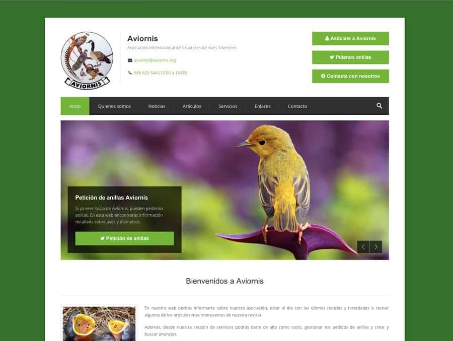 Dise o web para mascotas for Diseno de interiores paginas web