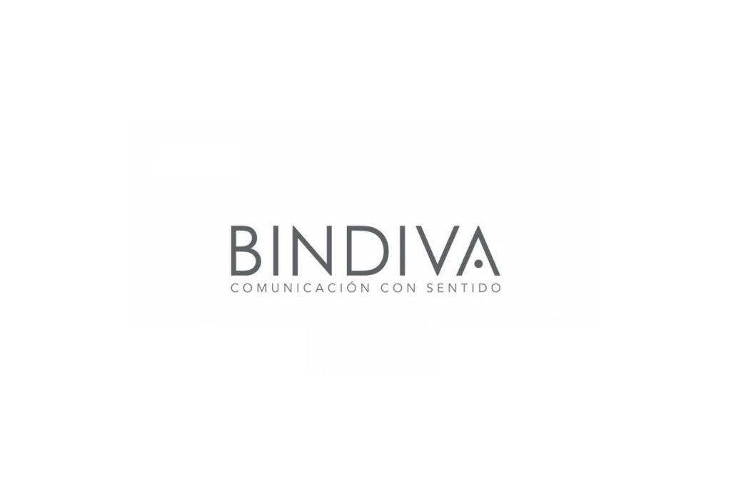 Las mejores agencias de marketing online de México-Bindiva