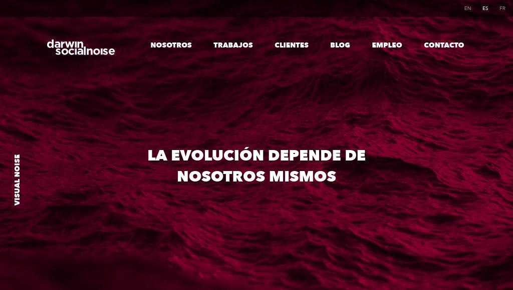 Las mejores agencias de marketing online de México-darwin