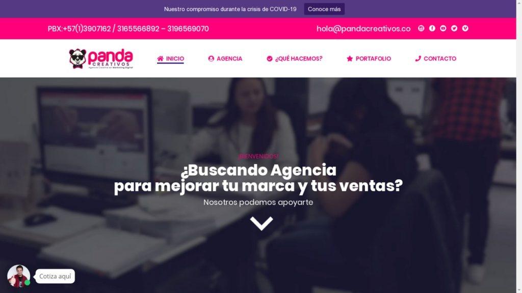 las mejores agencias de marketing online de Colombia-panda creativos