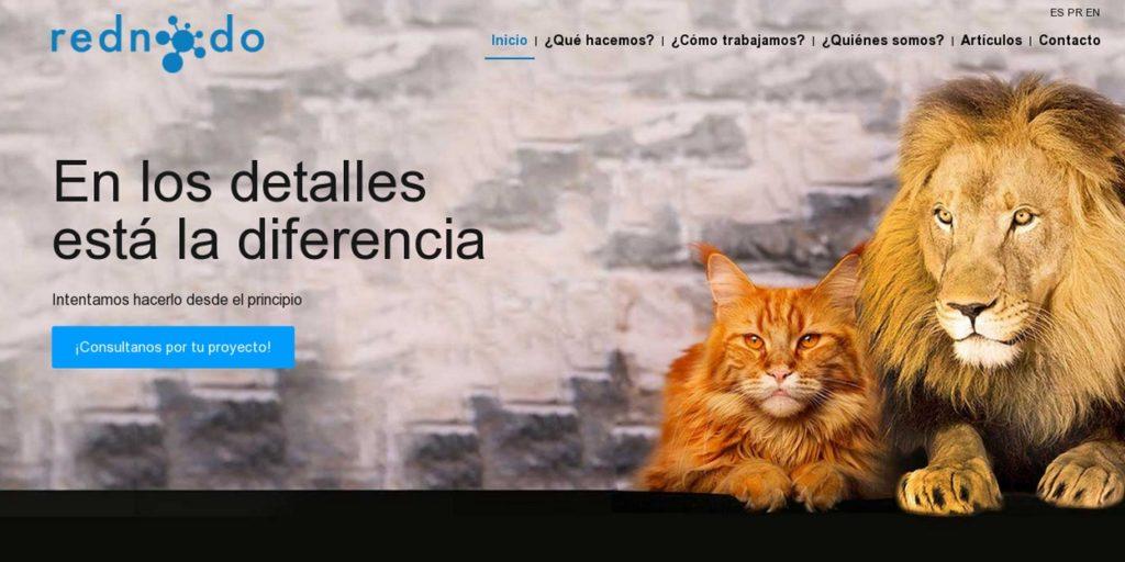 las mejores agencias de diseño web de Argentina-rednodo